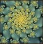fractals12