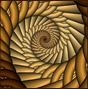 fractals14